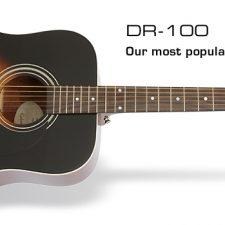 DR100_VS