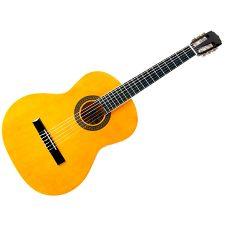 Aria Classical Guitar FST-200 N