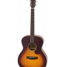 Aria acoustic guitar Aria-101 MTTS
