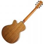 Aria Acoustic Guitar TG-1 B