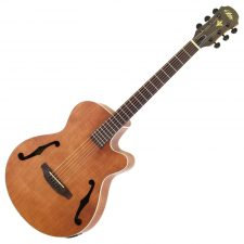 Aria E.Acoustic guitar wbag PET-F1 N