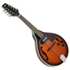 Mandolin With Pickup AM-20E