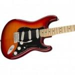 Fender Player Stratocaster Plus Top Maple Fingerboard Aged Cherry Burst