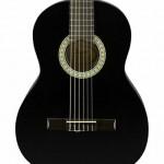 Fender SA-150 (1)